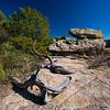 wood rocks trees Chiricahua