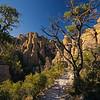 Echo Canyon Trail Chiricahua