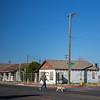 walking the dog across Haskell St Willcox AZ