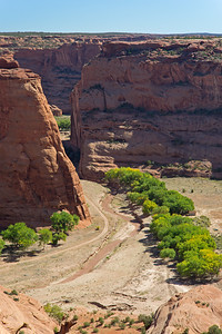 river bed & trees Canyon de Chelly