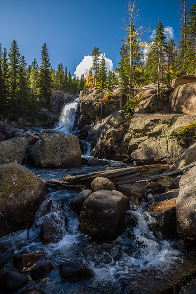 other view of Alberta Falls
