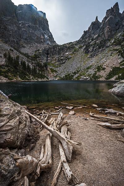 driftwood at Emerald Lake