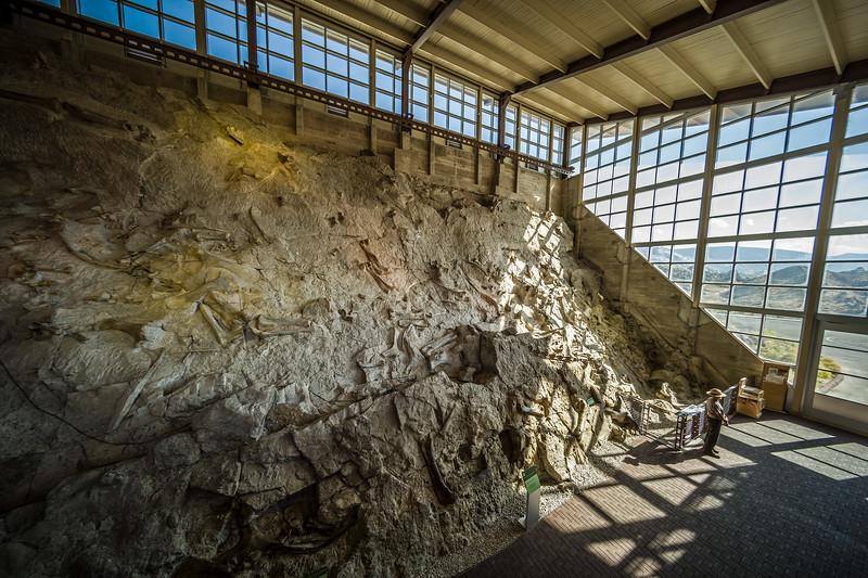Dinosaur National Monument quarry