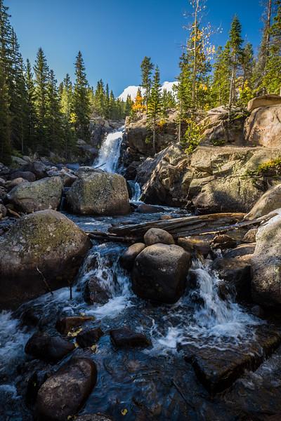 Alberta Falls Rocky Mtn National Park