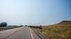 real cowboys wyoming road