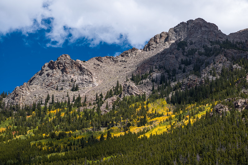 aspens in changing light Rocky Mtn National Park a minute later