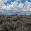 Tetons across the sagebrush