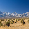panorama Organ Mountains