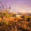 high desert Las Cruces NM