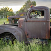 rusty pickup in field off NM 70
