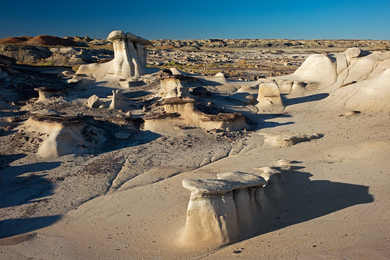 lumps and slabs Bisti National Wilderness