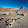 blobby rocks strewn on desert floor Bisti National Wilderness