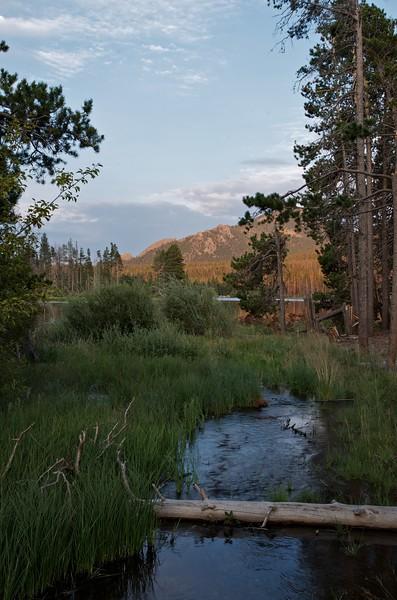 Stream near Sprague Lake