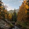 Fall color  near Dream Lake
