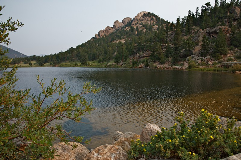 Lily lake, morning