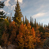 Fall color on the trail to Dream Lake