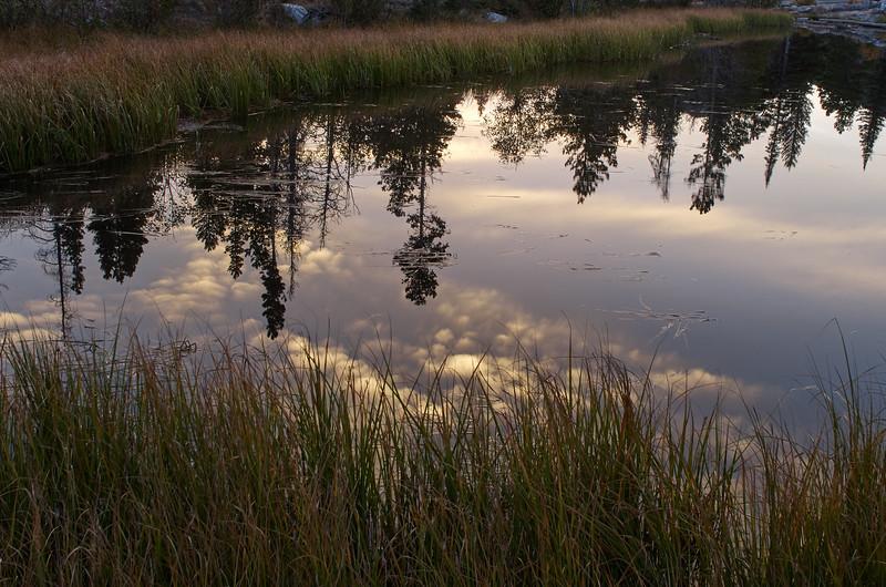 Morning reflection