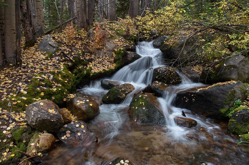 Cascade on Boulder Creek