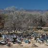 graveyard near Trampas
