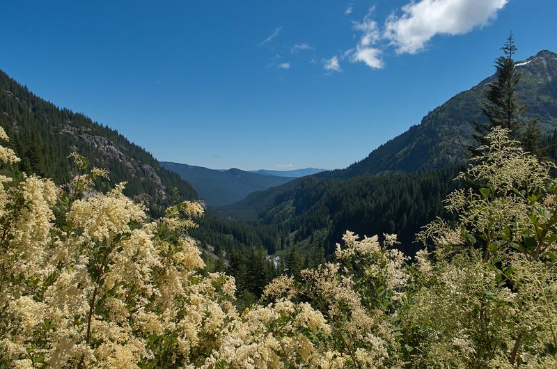 Stevens River valley