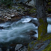Tanaya creek