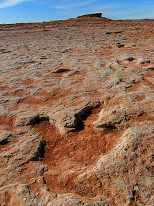 Fossilized dinosaur tracks, AZ