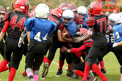 American Youth Football - Leom vs Fitch -Oct 16 2016