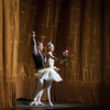 Veronika Part and  James Whiteside, Swan Lake, June 15, 2016