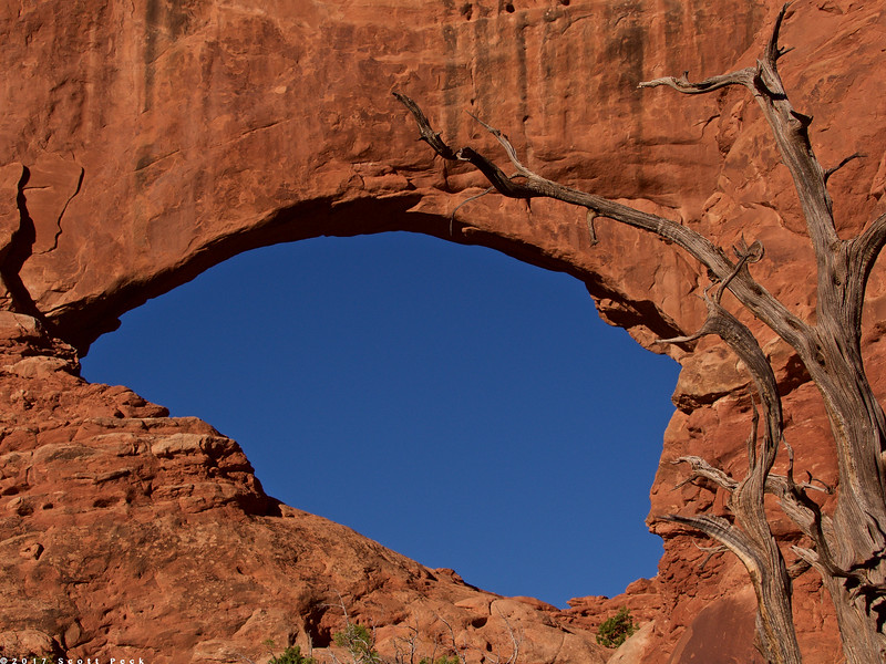 Arches 5