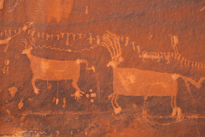 Closeup of Some Petroglyphs At Procession Panel