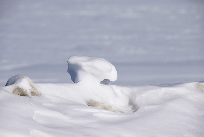 a mushroom of snow