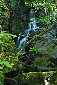 Jack Falls, beside the road on the North Umpqua Scenic Byway, Oregon, on a hot July morning