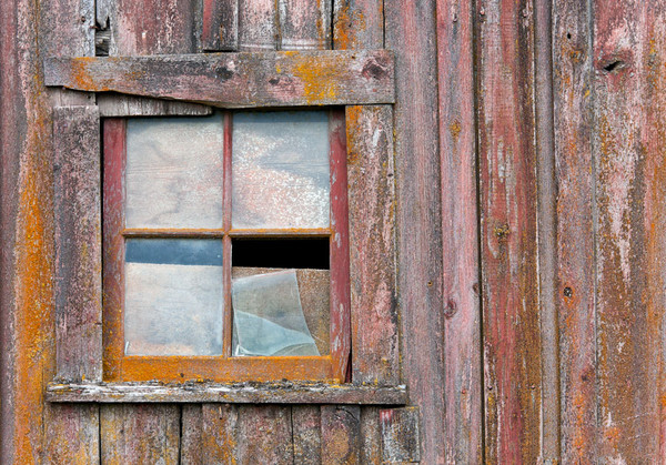 Palouse Window