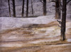 Mammoth Terrace