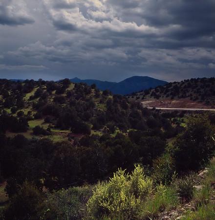 Sacramento Mountains, New Mexico. July 1985.