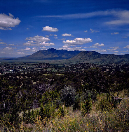 Sacramento Mountains, New Mexico. July 1985.
