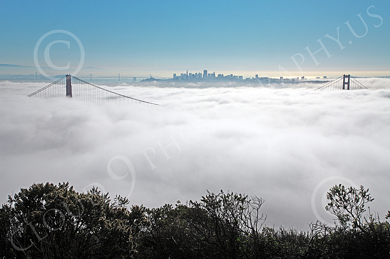 ENGF-GGB 00204 The Golden Gate Bridge engulfed in thick fog, by Peter J Mancus