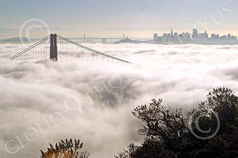 ENGF-GGB 00166 One Golden Gate Bridge tower towers about fog with San Francisco in the background, by Peter J Mancus
