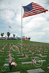 AMER-MilCem 00001 A picture of a US military cemetery on Memorial Day, by Peter J Mancus