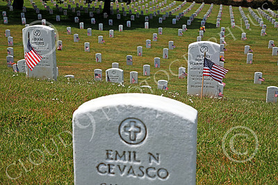 AMER-MilCem 00002 A Memorial Day down payment on freedom at a US military cemetery, by Peter J Mancus