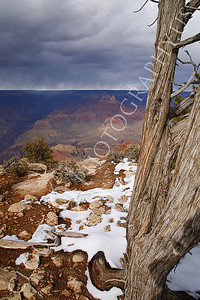 SCGNP 00021 Near a Grand Canyon cliff under a threatening stormy cloud front, by Peter J Mancus