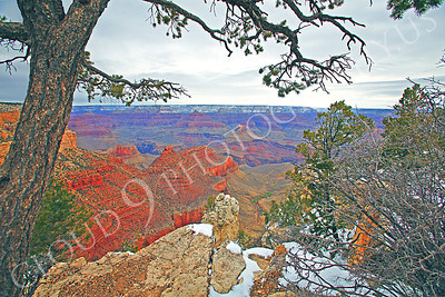 SCGNP 00025 Yellow, red, and magenta rocks-tons and tons--inside the Grand Canyon, by Peter J Mancus