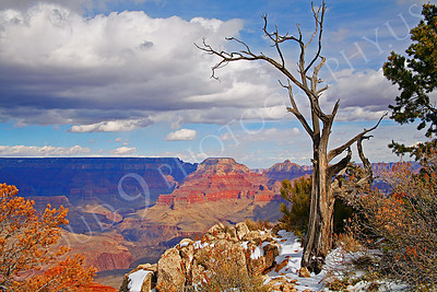 SCGNP 00016 The Grand Canyon under a sunny, cloudy sky in winter, by Peter J Mancus