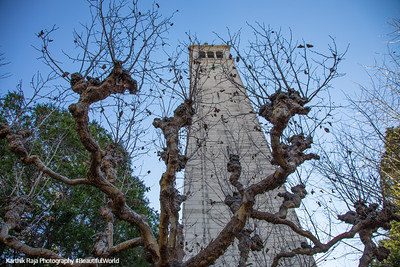 Campanile Esplanade, Sather Tower, Berkeley, California