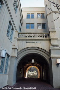 Stephens Hall, Berkeley, California