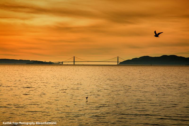 Golden Gate Bridge, Cesar E Chavez Park, McLaughlin Eastshore State Park State Seashore, California