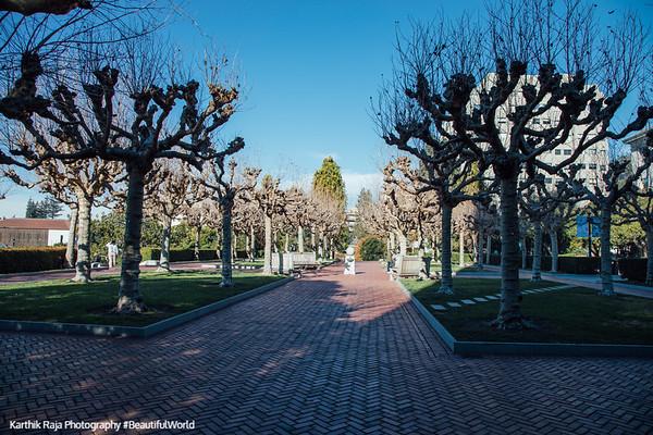 Campanile Esplanade, Berkeley, California