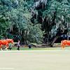 Middleton Place Plantation, Charleston, South Carolina