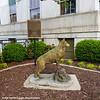 The American Kennel Club Dogny Project, Atlanta, Georgia