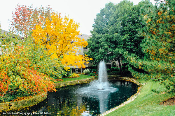 Fall colors, Autumn, Palatine, Illinois